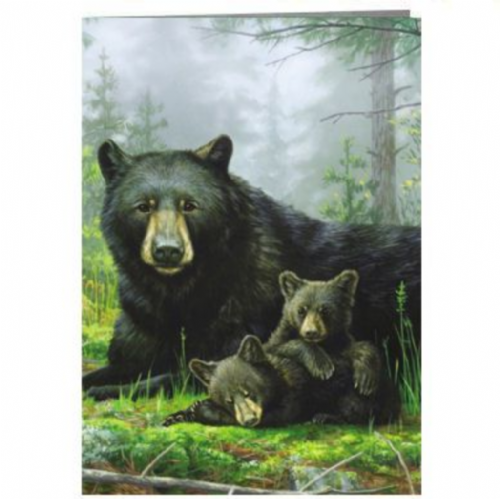 Nap Time Bear & Cubs  Greeting Card | Tree-Free Greetings®